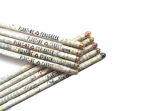 Goodwill Tech Seed Pencils Recycled Made Newspaper Eco - Friendly Paper for Kids School Writing, Sketching, Drawing (Pack of 20)