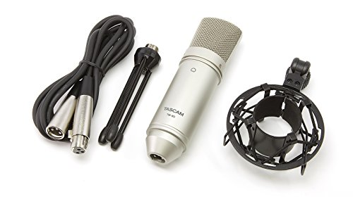 TASCAM TM-80, Microfono Professionale a Condensatore per Home Studio Recording per voce e strumenti acustici, Argento