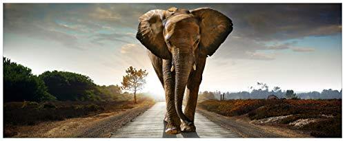 Wallario Acrylglasbild XXL Elefant bei Sonnenaufgang in Afrika - 80 x 200 cm in Premium-Qualität: Brillante Farben, freischwebende Optik