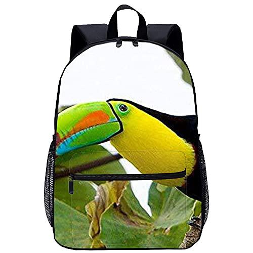 Mochila Infantil 3D Mochila Infantil Animales de observación de aves de Belice Adecuado para: estudiantes de primaria y secundaria, la mejor opción para viajes al aire libre Tamaño: 45x30x15 cm   1