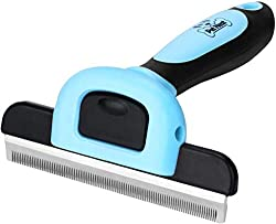 Essential Needs Before Raising A Cat - The Best Cat Brush For Shedding