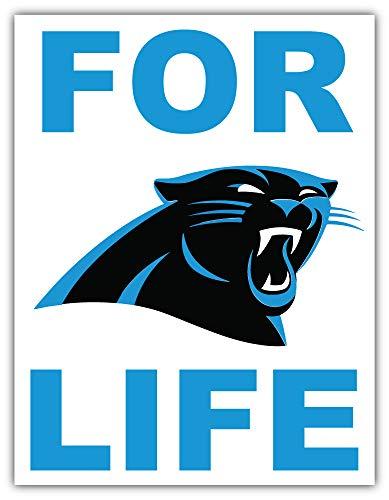 Carolina City Panther Sport Football Logo Die-Cut Sticker Decal 11'' X 14''