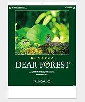 2021令和3年カレンダーディアフォレスト 森は生きている