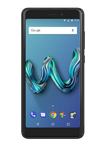Wiko Tommy 3 Smartphone (13,8 cm (5,45 Zoll) Display, 16GB interner Speicher, Android Oreo Go Edition) anthrazit & bleen