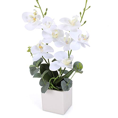 RERXN Artificial Orchid Flowers with Vase, Fake Orchid Arrangement Potted Silk Phalaenopsis Flower Arrangement for Home Table Party Decor (White)