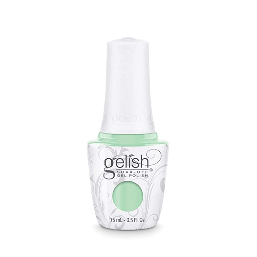 多分里親暖かさHarmony Gelish - Mint Chocolate Chip - 0.5oz / 15ml