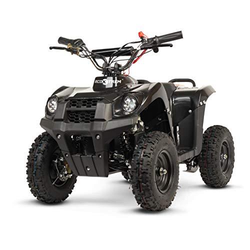 ECOXTREM Quad para niños de Color Negro, eléctrico, Infantil, Motor 800W, batería...