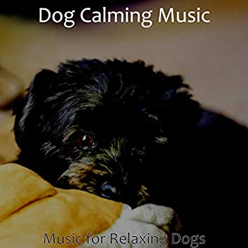 Music for Relaxing Dogs