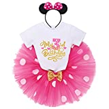Mouse 3rd Birthday Outfit Baby Girl Short Sleeve T-Shirt Top Polka Dots Mini Tutu Skirt Headband 3 Years Old Cake Smash Photo Shoot I'm Three Third Birthday Party Supply Toddler Clothes Hot Pink 3T