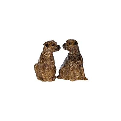 Quail Ceramics - Border Terrier Salt And Pepper Pots from Quail Ceramics