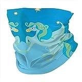 Variedad bufanda de cabeza, personalizada, para exteriores, diadema deportiva, pegaso, estrellas amarillas, fondo azul en el cielo