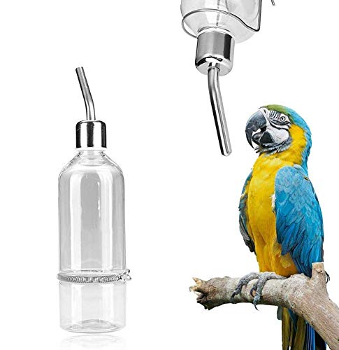 Alimentador de agua del loro Mascota que cuelga Botella de alimentación de agua No dispensador de goteo Suministros para mascotas con niple de bola de acero inoxidable para animales pequeños(L)