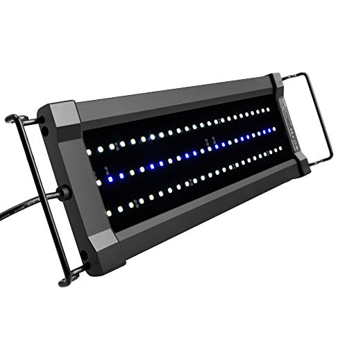 NICREW ClassicLED Gen 2 Aquarium Light, Dimmable LED Fish Tank Light with 2-Channel Control, White and Blue LEDs, High Output, Size 12 to 18 Inch, 11 Watts