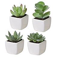 Set of 4 Mini Assorted Green Artificial Succulent Plants in Square White Ceramic Planters