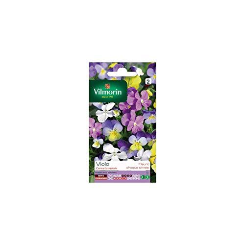 Sachet graines Viola Cornuta variée