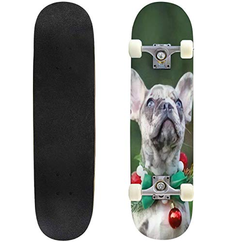 Small Merle Colored French Bulldog Dog Puppy Wearing Seasonal Skateboard 31'x8' Double-Warped Skateboards Outdoor Street Sports Skateboard for Beginners Professionals Cool Adult Teen Gifts