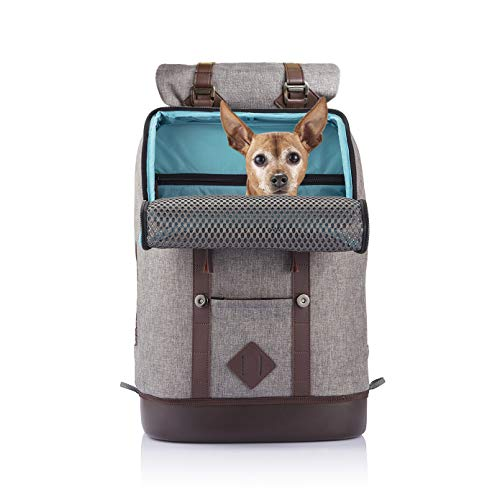 Kurgo Dog Carrier Backpack for Small Pets, K9 Rucksack, Heather Grey, Waterproof Bottom for Pets up to 11 kg, Small