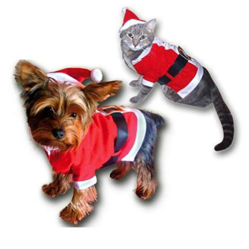 Sandy - Costume Noël pour chat - chien