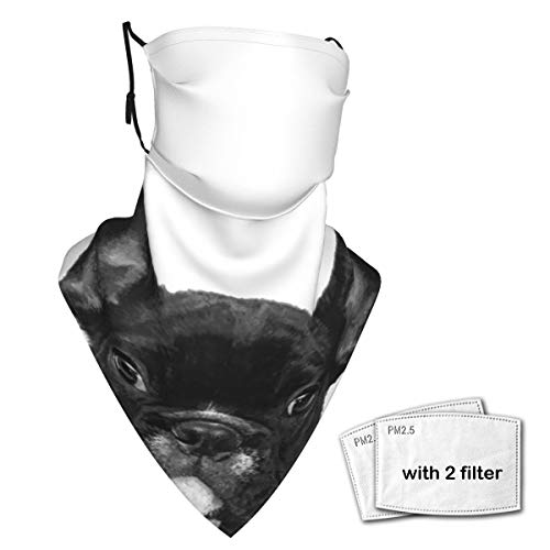 Neck Gaiter Face Scarf Bandanas Wind Sun Protection, Black and White French Bulldog Funny Multi-Purpose Cloth mask Balaclava for Outdoor Hiking Cycling Running