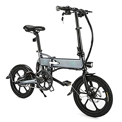 """FIIDO D2 Folding EBike, 250W Aluminum Electric Bicycle with Pedal for Adults and Teens, 16"""" Electric Bike 15Mph with 36V/7.8AH Lithium-Ion Battery, Gray"""