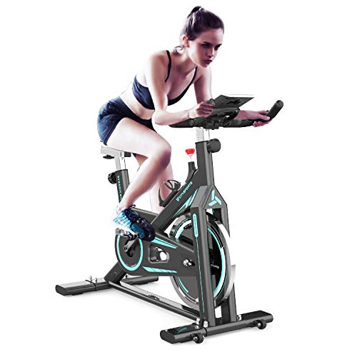 Flywheel Belt Drive Exercise Bike ,Indoor Fitness Stationary Spin Bikes,Indoor Gym Exercise and Fitness Home Cardio Workout Cycling Training LCD Monitor Cup Holder