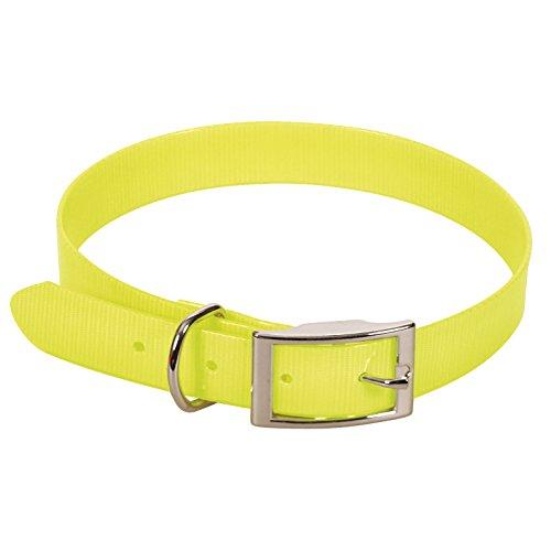 CHAPUIS SELLERIE SLA371 Collar Fluorescente de Perro - Correa de PVC Amarillo - Ancho 15 mm, Largo 35 cm, Talla S