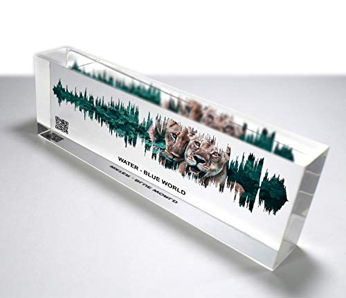 OOCLAS Custom Soundwave Print, Colorful 3D Look Gift, Personalized Sound Wave Art, Personal Voice or Any Song, Premium Clear Acrylic Glass Block Size (12 X 3 X 1.25 Inches)