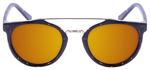 PALOALTO - Gafas de sol Richmond habana oscuro - P73002.1