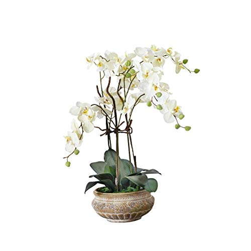 Pureday Kunstpflanze Orchidee Bild