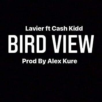 Bird view (feat. Cash Kidd)