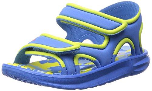 adidas Zump I lucblu/lgtyel/borang