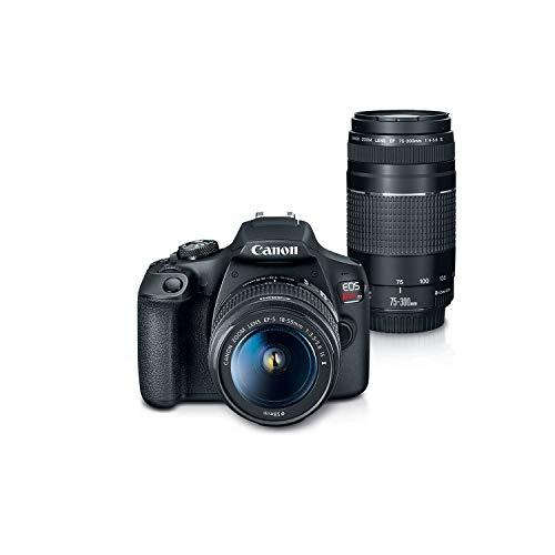 precio de camaras profesionales fabricante Canon