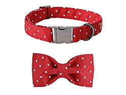 Red and white polka dot bowtie and dog collar set.