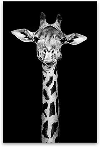 Surfilter Print auf Leinwand Leinwand Malerei Wandkunst Leinwanddruck Giraffe Tierporträt Poster Bild für Wohnzimmer Home Decorative 19.6& rdquo; x 27.5& rdquo; (50x70cm) No Frame 1