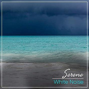 # 1 Album: Serene White Noise