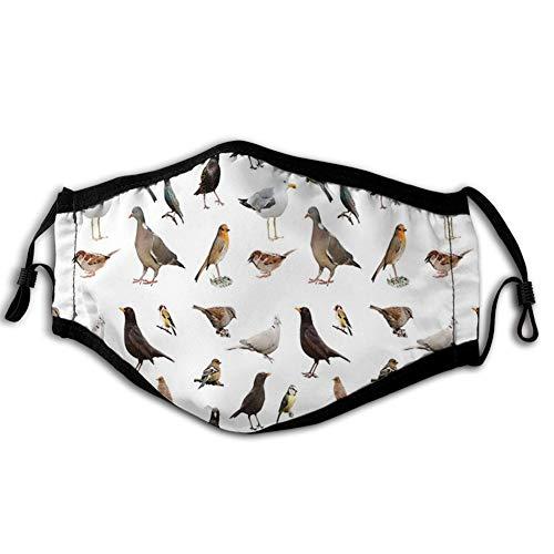 Comfortabele Winddichte Gezichtskap,Collectie van Britse Tuinvogels Duif Robin Duif Chaffinch Sparrow en Dunnock,Gedrukte Gezichtsdecoraties voor man en vrouw