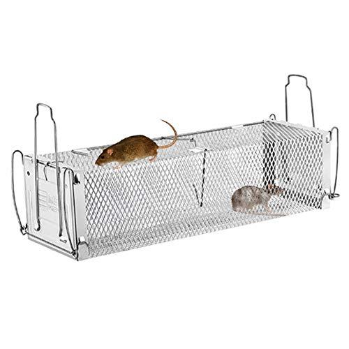 Mausefalle Lebend Kastenfalle Groß Rattenfalle Lebendfalle Extra Feinmaschige 2 Eingang Tierfalle mit Köder Küche, Garten & Haus Kastenfalle Metall Doppeltür