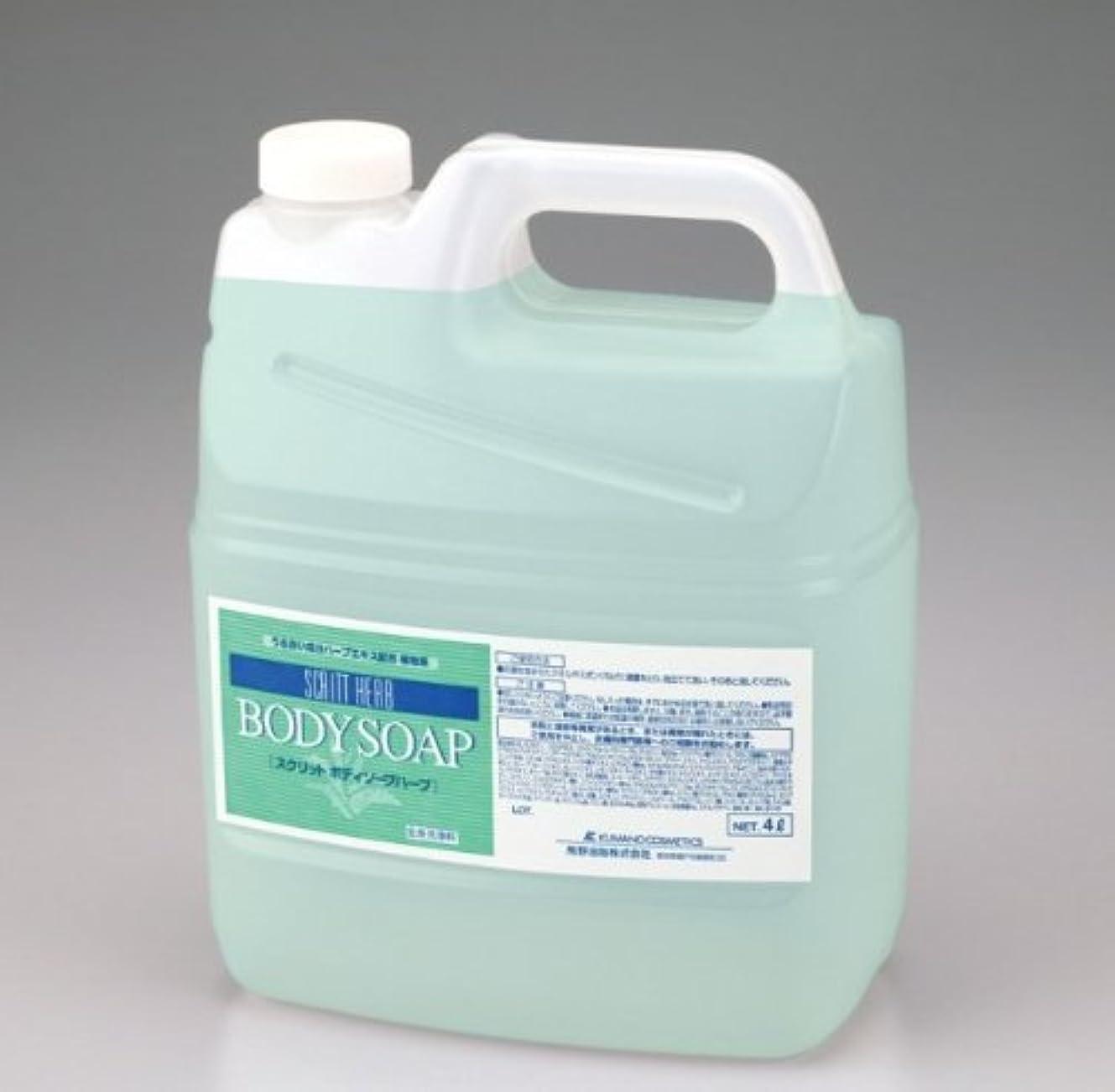 粘着性メロディアスメンテナンス熊野油脂 業務用 SCRITT(スクリット) ボディソープ 4L