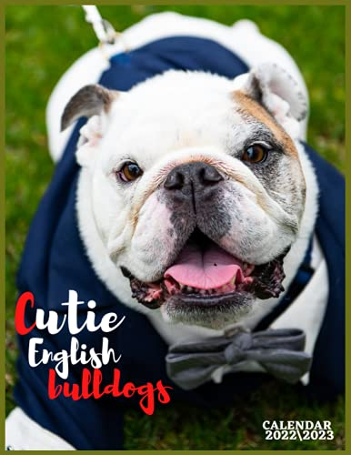 CUTIE ENGLISH BULLDOGS CALENDAR 2022'3: english bulldogs monthly wall calendar size 8.5x 11 inch with high quality images glossy for everyone