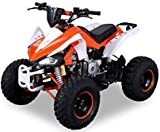Kinder Quad 125 ccm orange/weiß Speedy
