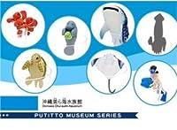 コップのフチ子 沖縄 美ら海水族館 限定 シークレット 全種 セット