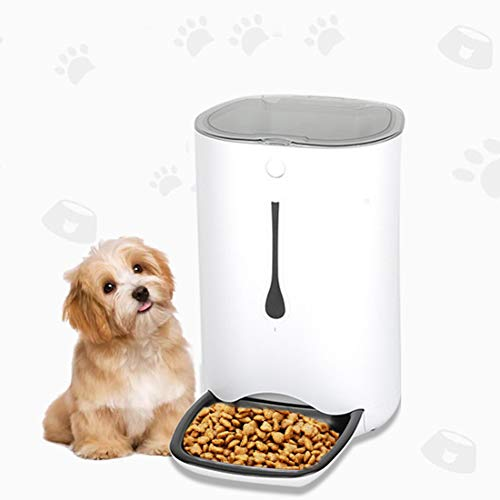 Feeders Automatic of Pets for Dogs Cats 6L, 10s Recording Voice, Dispenser Smart of 4 Foods, The Best for Travels of Holidays