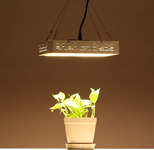 XECCON LED Pflanzenlampe 1000W Vollspektrum LED Grow Light Wachstumslampe für zimmerpflanzen mit Daisy-Chain Funktion