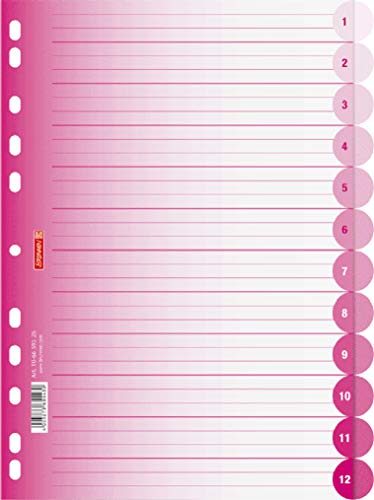 Brunnen 106659526 Ringbuchregister Colour Code (für Ordner und Ringbücher, aus PP, für A4, 12 Tabs) pink