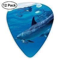 海のイルカはエレキギターとアコースティックギターに適したエレクトリックギターの絶妙な12ピースピック。