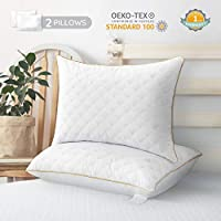 2-Pack Lute Standard Bed Pillows (White)