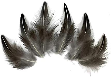 10 Pieces Natural Black and White Jungle Cock Loose Plumage Feather Fly Tying Moonlight Feather product image