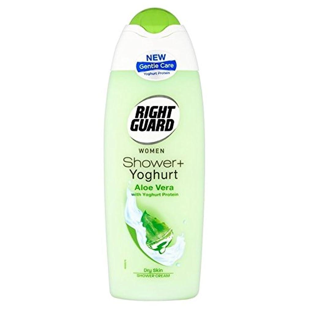 学習者アコー不十分右のガードシャワー+ヨーグルト250ミリリットル x2 - Right Guard Shower+ Yoghurt 250ml (Pack of 2) [並行輸入品]