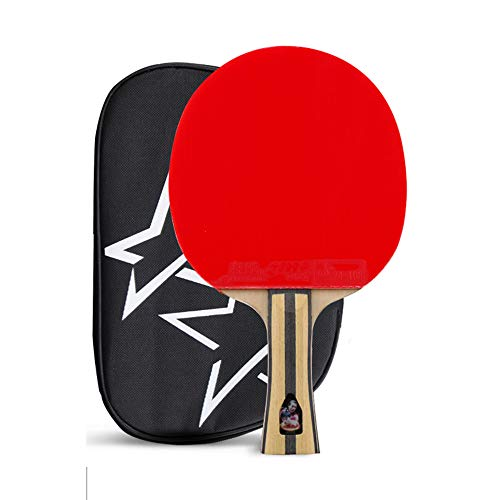 Review Of SSHHI 4 Star Table Tennis Paddle,Flare Handle,Ideal for Indoor and Outdoor Activities,Dura...