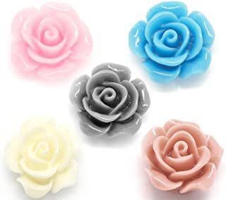 Housweety 100 Mixed Resin Flower Embellishments Jewelry Making Findings 14x6mm(1/2